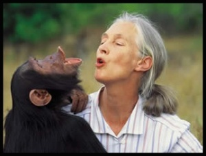 _Goodall_talking_with_a_chimp_friend_for_web