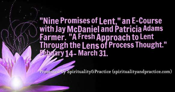 quotes--Nine-Promises-of-Le